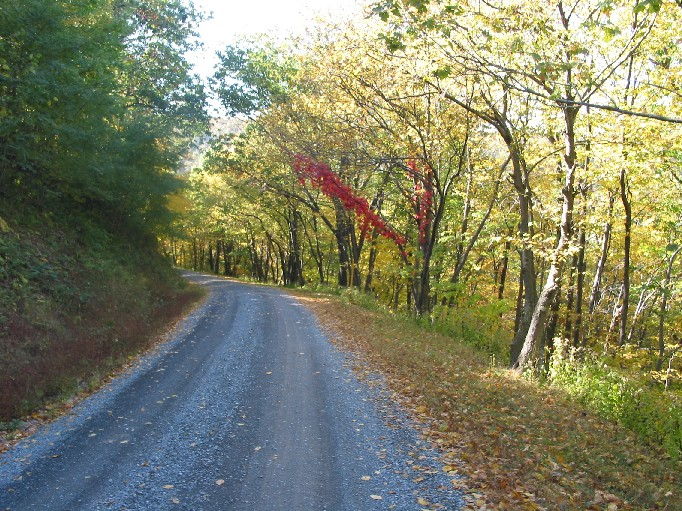 Gravel road in early autumn